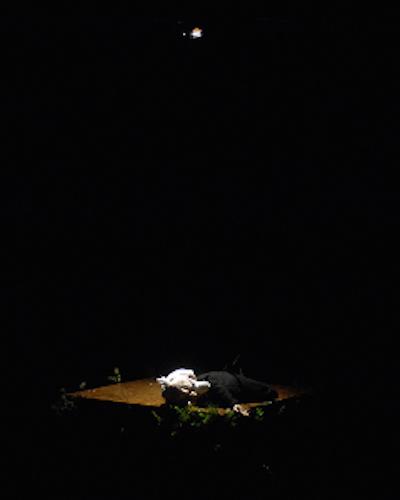 Wakka Wakka - The Death of Little Ibsen - Dead